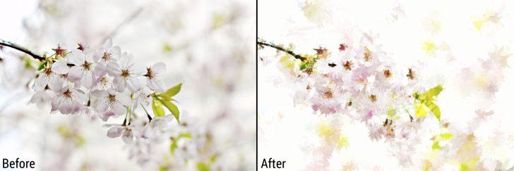 Flowers1_ba