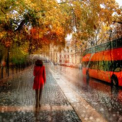Photography meets Impressionism with these spellbinding photos